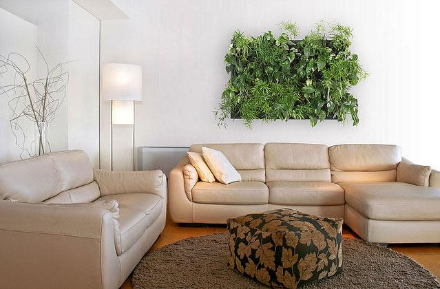 la importancia de las plantas en la decoracin